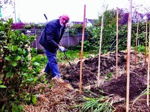 garden in Dad