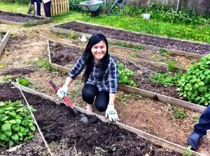 garden in nikie