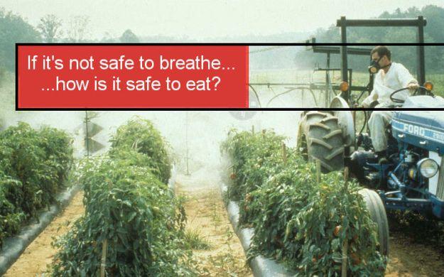 pesticide-food-spray-safety