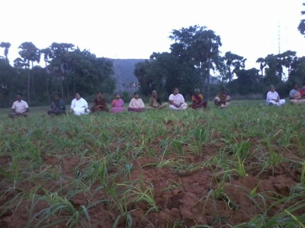 meditating in fields